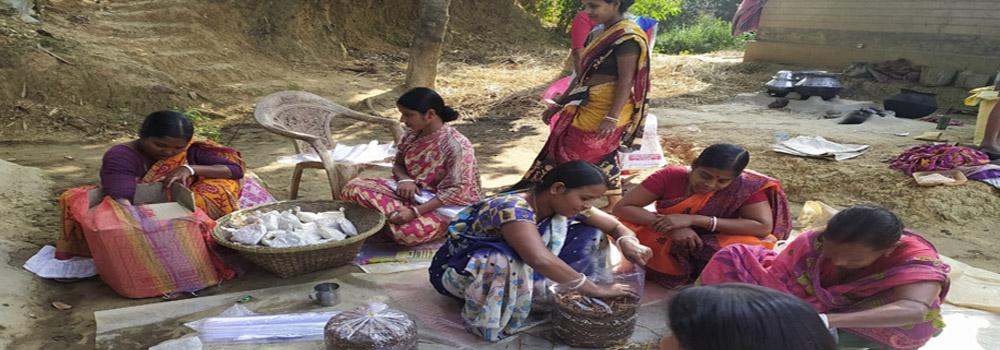 Women SHG members assorting mushromm spawns